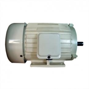 AC Industrial Motor