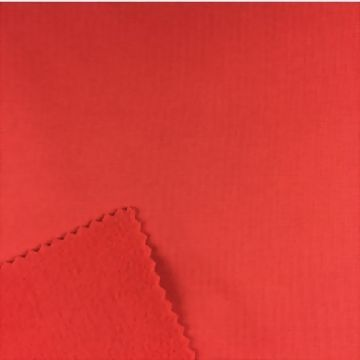 Brushed polyester fabric with innate wicking function