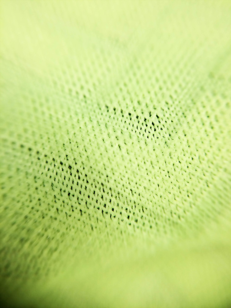 Polyester/Spandex Jacquard with burshed