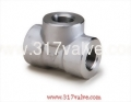 (FG-TEE-TH) HIGH PRESSURE PIPE FITTING TEE