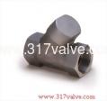 (VTP) STAINLESS STEEL 316 PISTON CHECK VALVE