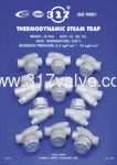 FC Steam Trap (screwed End & Flanged End)