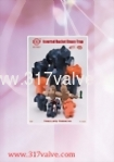 Brief Catalogues 2009 Bucket Steam Trap / Strainer Reducing Valve