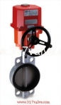 (ELECTRIC ACTUATOR BUTTERFLY VALVE)