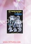 Ventil aus Sphäroguss / Rohr / Flansch P.48-50