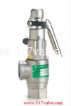 (SV-S8DL(FT)) ST.ST.316 SAFETY RELIEF VALVE (1x2)