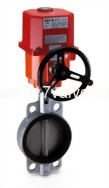 (UM-5/UM-6) Series Direct Mount & With Mounting Kits ELECTRIC ACTUATOR