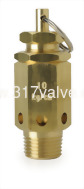 (SV-L1) BRONZE SAFETY RELIEF VALVE