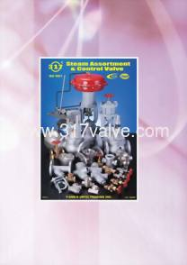 Steam Assortment & Control Valve / Sight Glass