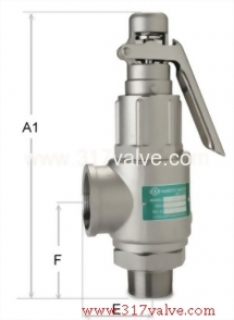 LOW LIFT ST.ST.316 SAFETY RELIEF VALVE (1x2) (SV-S8DL)