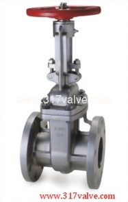 STAINLESS STEEL GATE VALVE ANSI 150 (SS304-54Y/SS316-56Y)