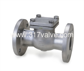 STAINLESS STEEL SWING CHECK VALVE ANSI 300 (SS304-34E/SS316-36E)