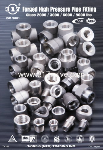 High Pressure Fittings Class 2000 / 3000 / 6000 / 9000 lbs