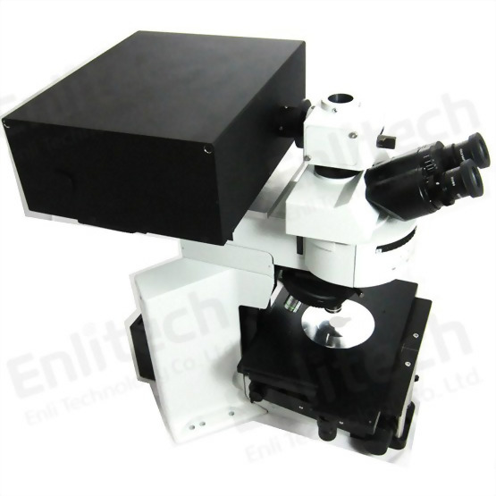Laser Scanning Confocal Microscopy