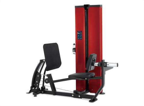 Leg Press / Calf Press