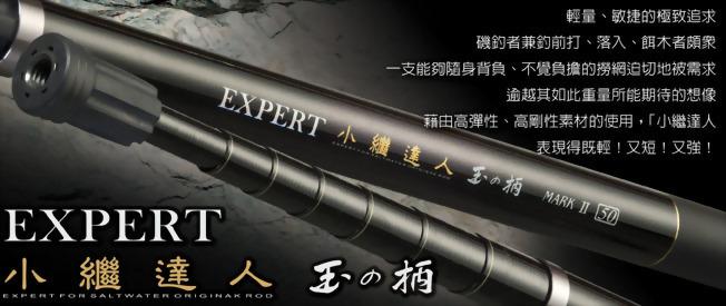 小繼達人 (Expert)