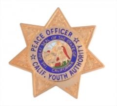 Police Badge 10
