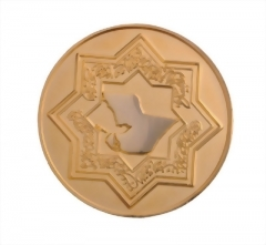 Custom Coins Lapel Pins 04