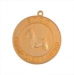 Medallion Lapel Pins