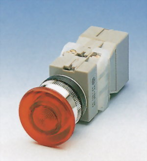 Illuminated Pushbutton Switches TIEPB30-1OC