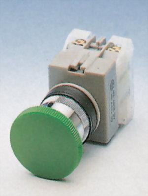 按鈕開關 AEPB22-1OC