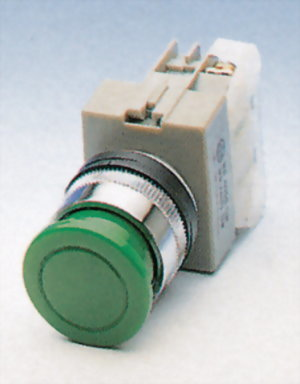 Pushbutton Switches AEPBS22-1O
