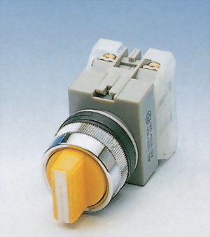 Selector Switches AUSS25-2O