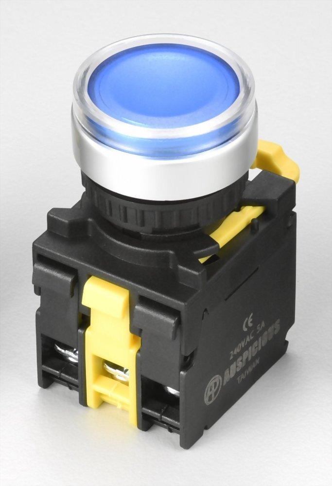 Illuminated Pushbutton Switches A2MGF11