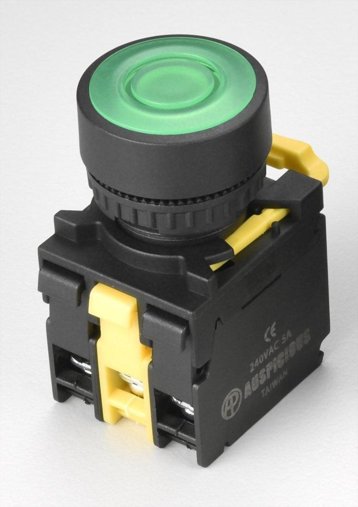 Illuminated Pushbutton Switches A2PPFL11