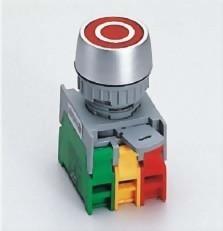 Illuminated Pushbutton Switches PFL22-1OC