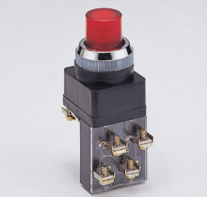 Illuminated Pushbutton Switches LPBN2511