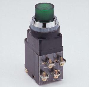 Illuminated Pushbutton Switches LPBT3011