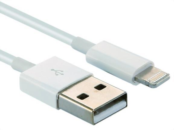 USB A Male to iPhone 8P Male