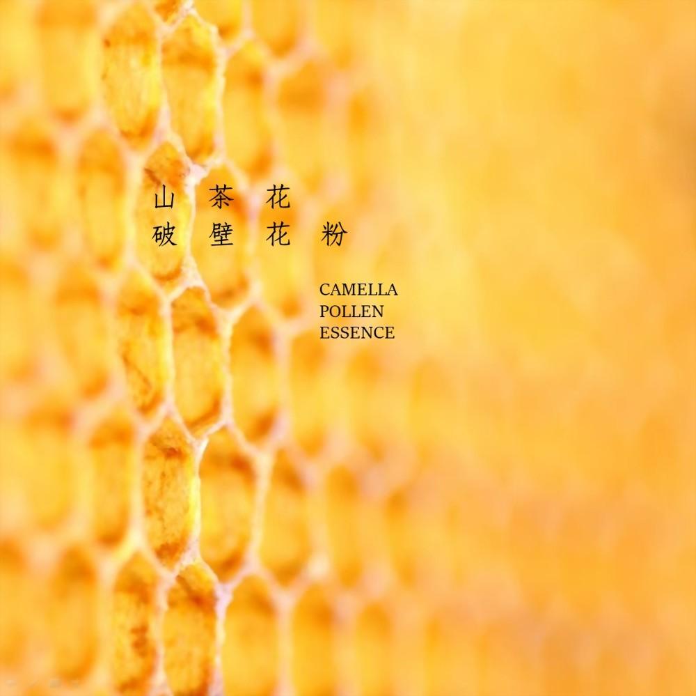 蜂花粉(原粒、破壁)