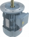 立式鋁殼馬達 (1/4HP~10HP)