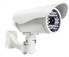 D1/2Megapixel Netwrok Camera