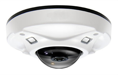IR Fisheye Vandal IP Camera