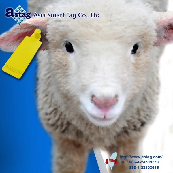 Sheep Ear Tag(UHF)