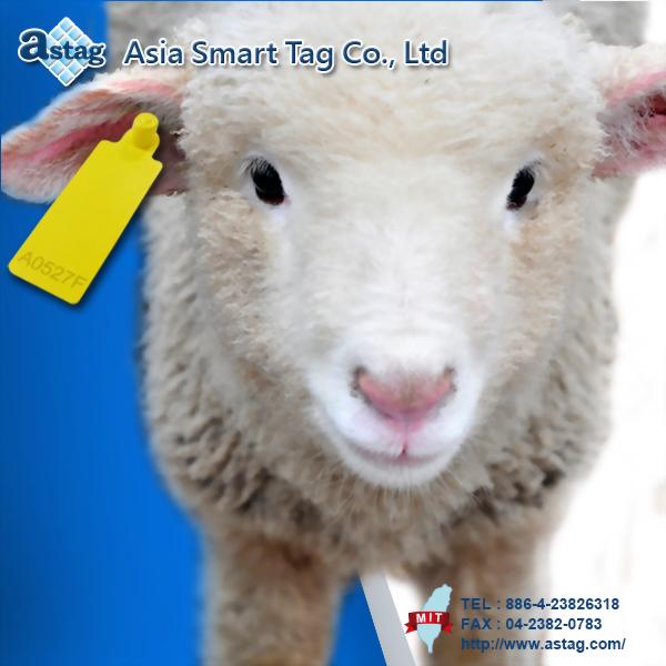 畜牧用(羊用)超高頻感應標籤