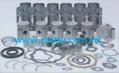 Engine Gasket Kit RVI 1