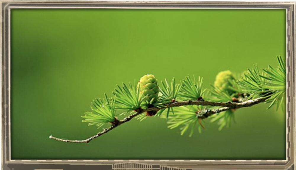 4.30 inch 480x272 TFT Display, BTH043A-DHC$