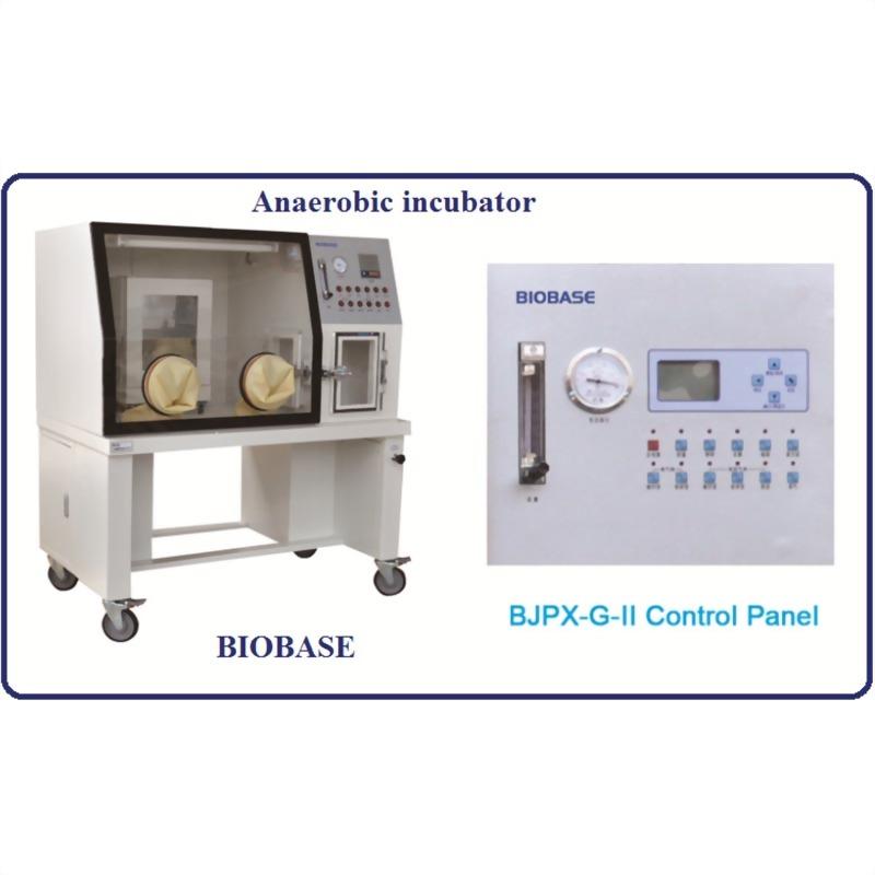 厭氧培養箱手套箱BJPX-2