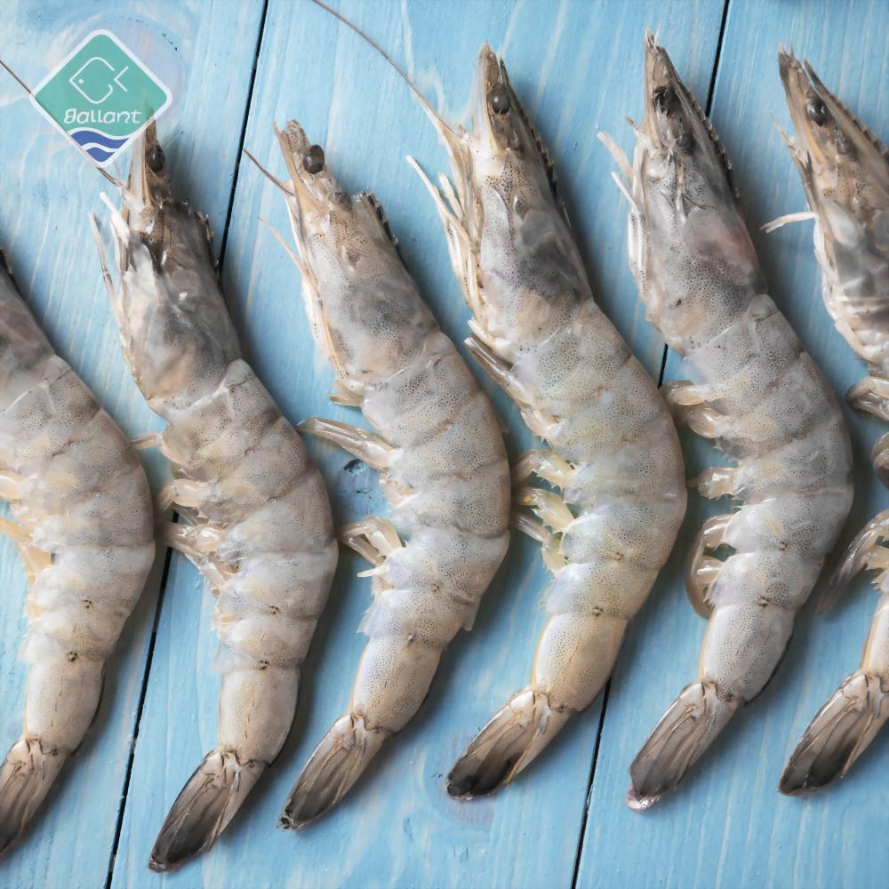 Head On Shell On Vannamei Shrimp