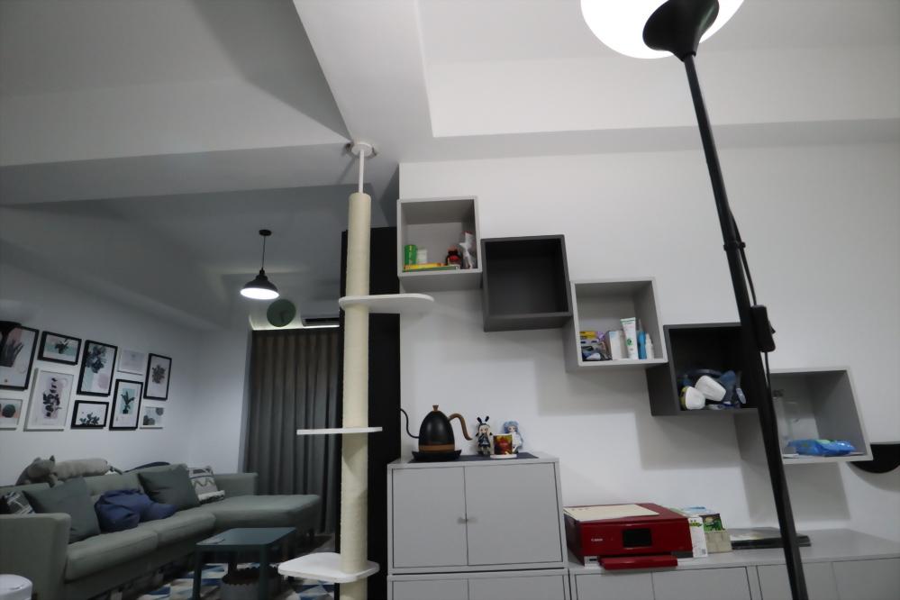 攝影工作室的貓屋2